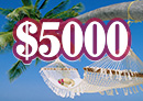 Win $5000 cash